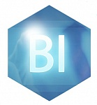 Курс лекций: Oracle BI(Business Intelligence Suite Enterprise Edition) Сервер - версия 11. Создание, организация  совместного использования аналитических WEB витрин и отчетов во всех стандартных форматах